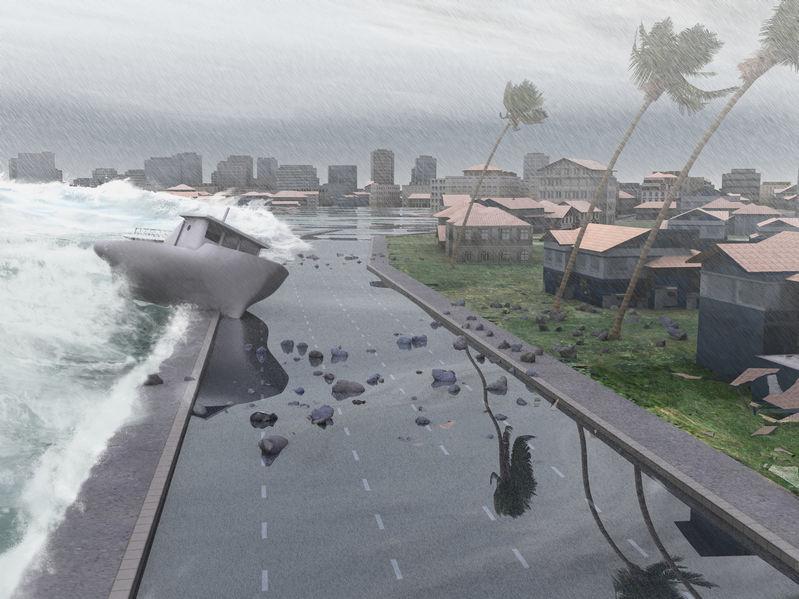 Hurricane Season Is Mold Season